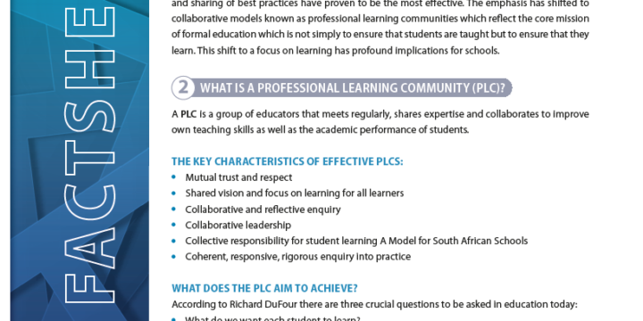 Setting Up Professional Learning Communities